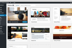 WordPress website and Blog design and development